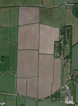 kavel cultuurgrond – 8 percelen – 17.25.45 ha te Triemen